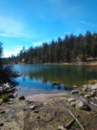 Pinewoods Resort : 30 min walk to the lake