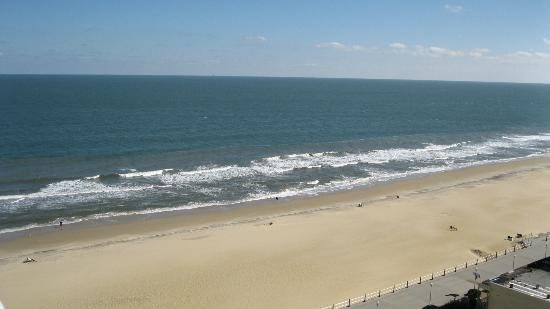 Ocean Beach Club: View from 13th floor balcony, 3rd unit back.