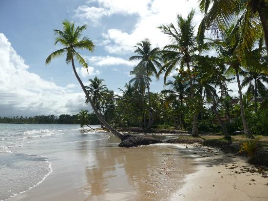 Grand Bahia Principe El Portillo : plage magnifique