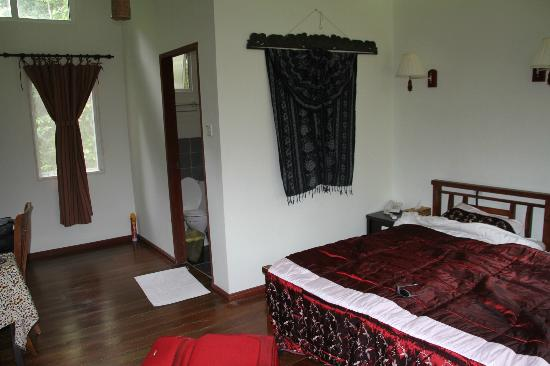 Borneo Nature Lodge : Room
