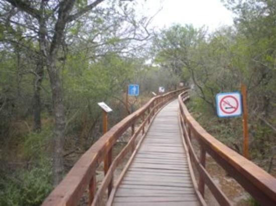 Termas de Rio Hondo, อาร์เจนตินา: pasarelas
