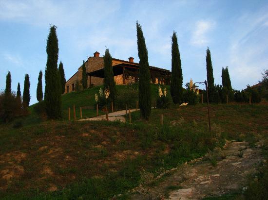 Agrihotel Il Palagetto: Viale con cipressi