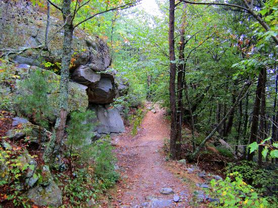 Chatsworth, GA: trail at the top of the mountain