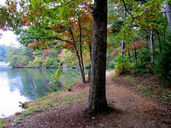 Fort Mountain State Park: Lake trail