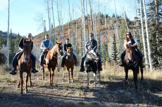 Red Pine Adventures: Us and our friendly horses (and super friendly mule)