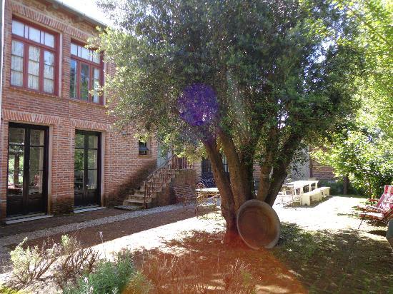 Casa Zinc: patio del hotel desde donde se ve nuestra habitación