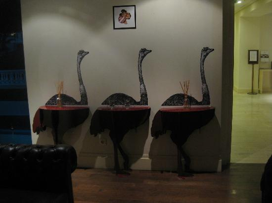 Pallas Athena Grecotel Boutique Hotel: Want to stand next to an ostrich?