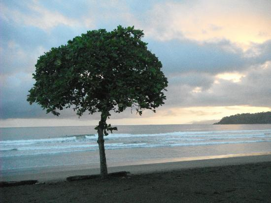 El Sitio Playa Venao: Playa Venao @ Sunset Looking East Towards Cambutal