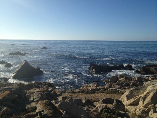 Sea View Inn: sea