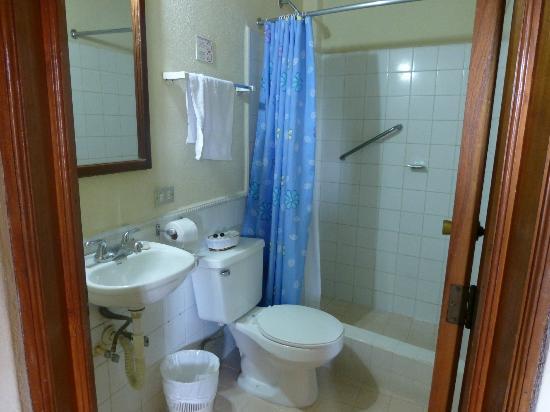 Hotel Casona de la Isla: Nice bathroom, no complaints