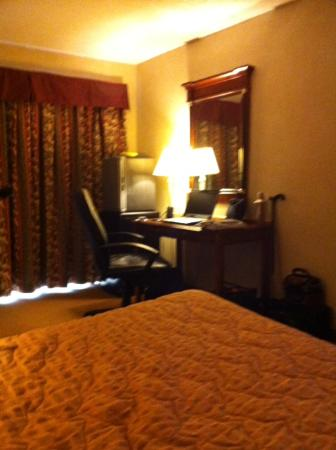 Econo Lodge Welland: desk with ergonomic chair