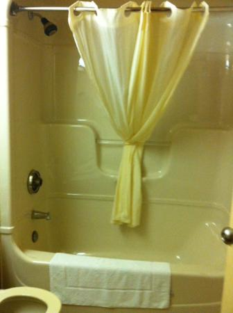 Econo Lodge Welland: clean bath and shower area