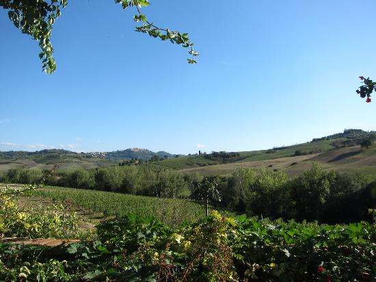 Follonico: The view from our patio