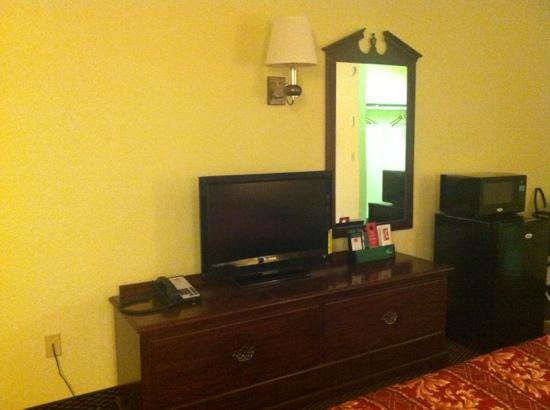 Rodeway Inn: newer tv, fridge and microwave.