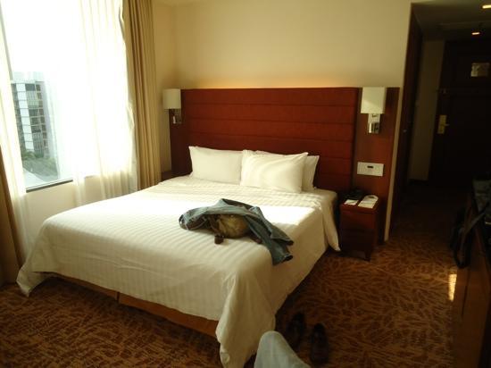 Rembrandt Hotel Bangkok: clean, modern room