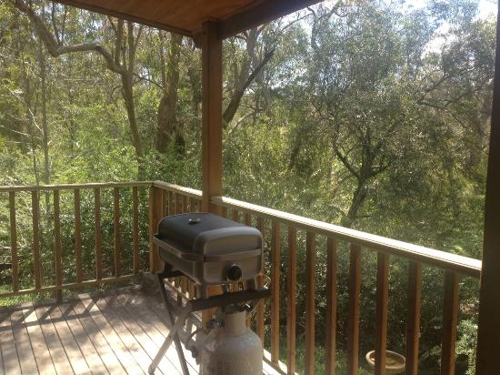 Bingle Tree Retreat: Veranda/BBQ