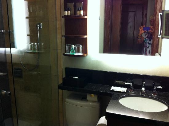 Fairmont Banff Springs : 6' x 4' bathroom - room for one only