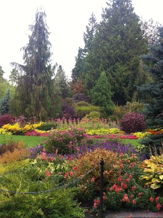 Queen Elizabeth Park Vancouver All You Need To Know