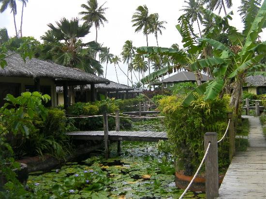 Beqa Lagoon Resort: Koi pond rooms
