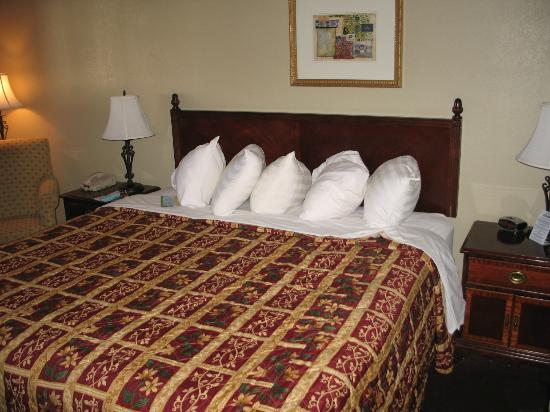 Days Inn Montrose: Comfortable bed with awesome pillow selection