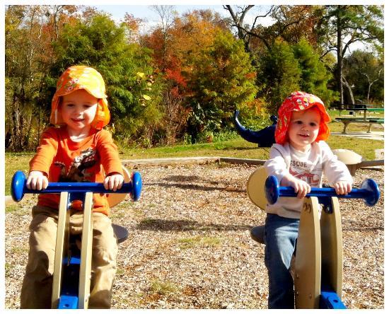 Milton Memorial Park: Nice modern playground equipment