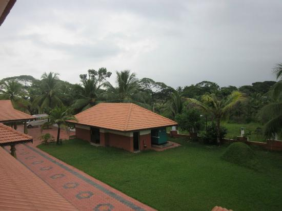 Green Fields Kumarakom: From my room