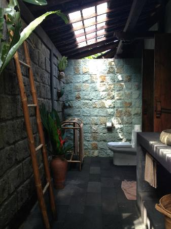 Bali Eco Stay Bungalows: Huge toilet.
