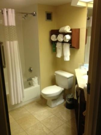 Hampton Inn Cincinnati Riverfront (Downtown Area): Bath