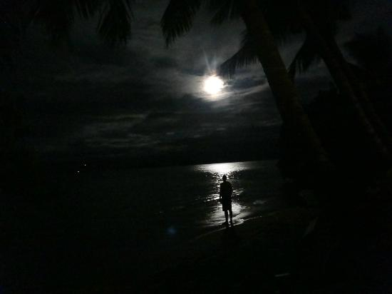 Coconut Grove Beachfront Cottages: Full moon rising from Banana bure