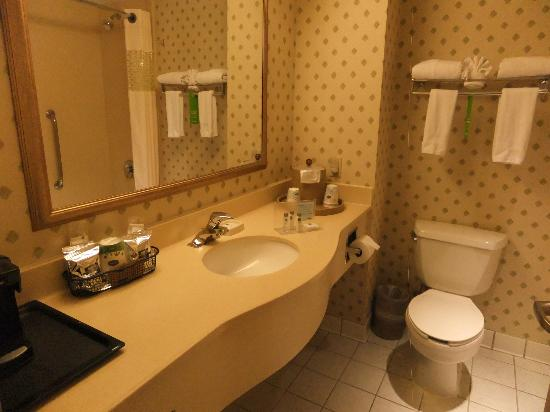 Hampton Inn NY - JFK: bathroom