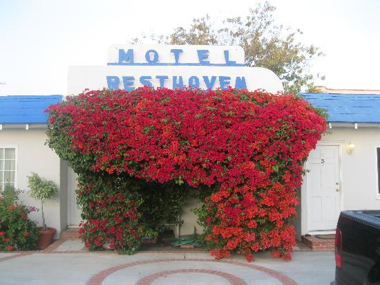 ‪Rest Haven Motel‬