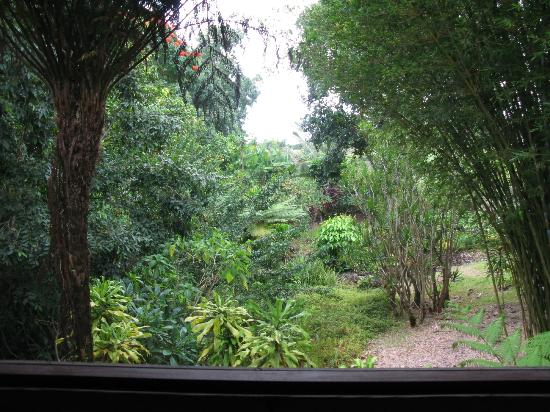 Hamoa Bay Bungalow: View of the grounds