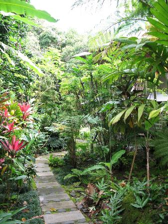Hamoa Bay Bungalow: path to the outdoor shower