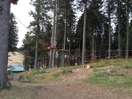 Familien- & Sporthotel Feldberger Hof: climbing park right behind hotel