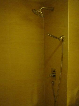 Spring Time Hotel Zhujiang New Town: Shower accessories