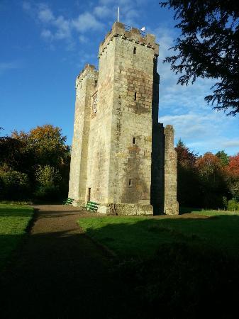 Preston Tower: Nice View