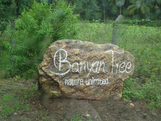 Banyan Tree Farmstay