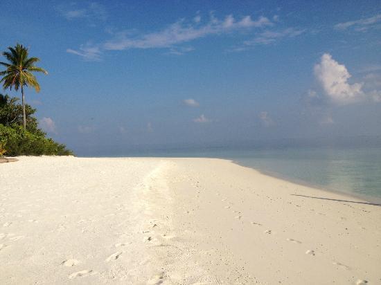 Mirihi Island Resort: island life