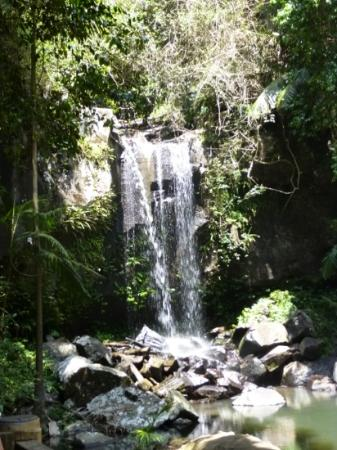Southern Cross 4WD Tours: water fall