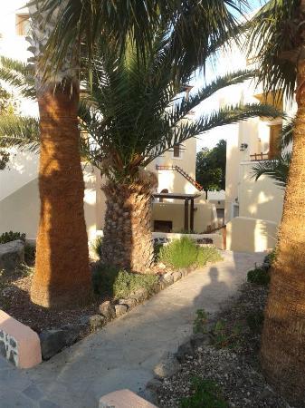 Ξενοδοχείο Σμαράγδι: gardens