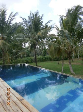 Comilla Bungalow: lovely pool for sunset swim