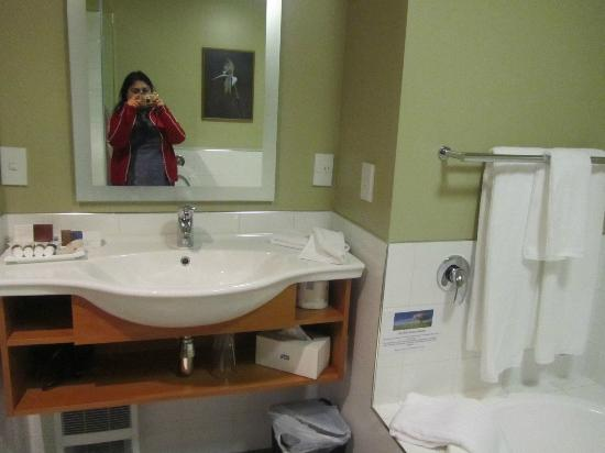 福克斯冰川酒店照片
