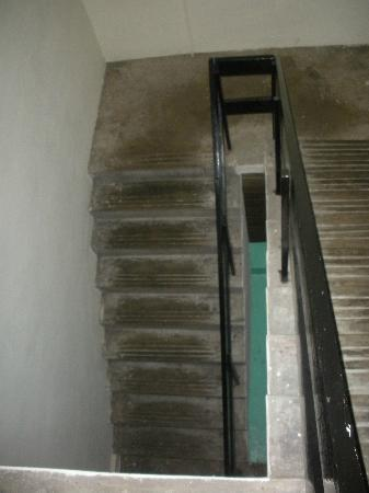 Wow Hostels: Stairs down from room.
