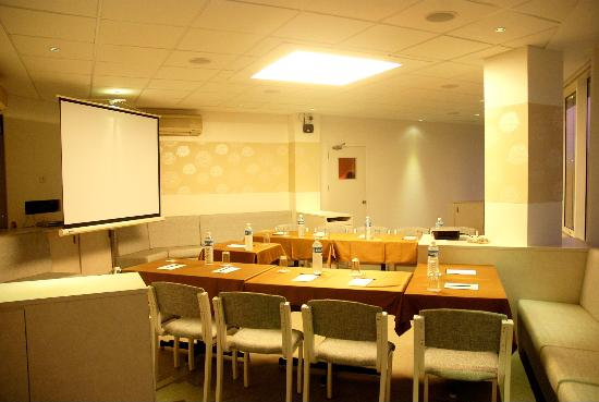 Executive Tamanna Hotel: Conference Room