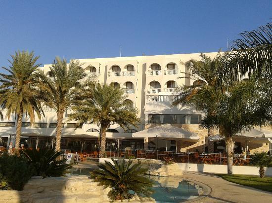 Oroklini, Chypre : Отель и финиковые пальмы