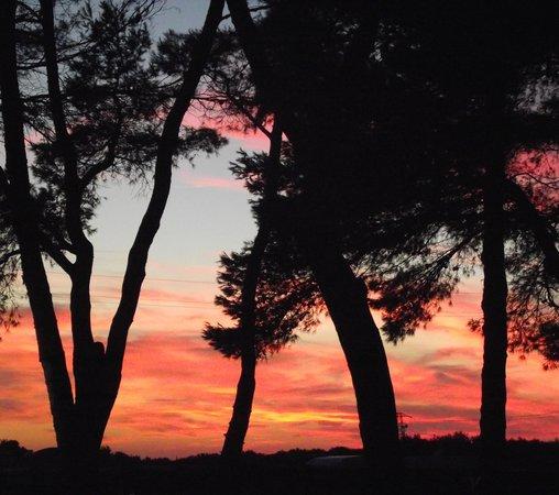 Populonia, Italy: Tramonto al Camping Sant'Albinia