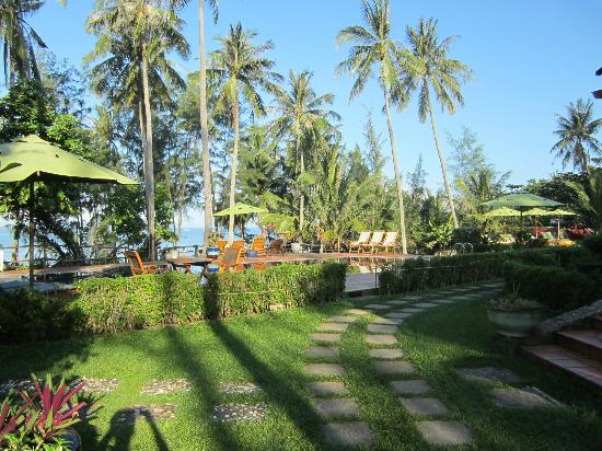 Cassia Cottage: View from room