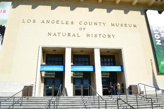 Restaurants Near The Natural History Museum Of Los Angeles County