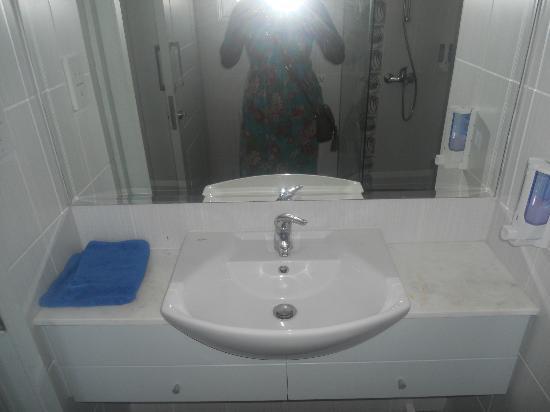 Napa Prince Hotel Apartments : sink