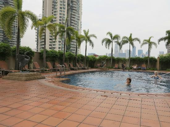 Grand Copthorne Waterfront Hotel: pool side